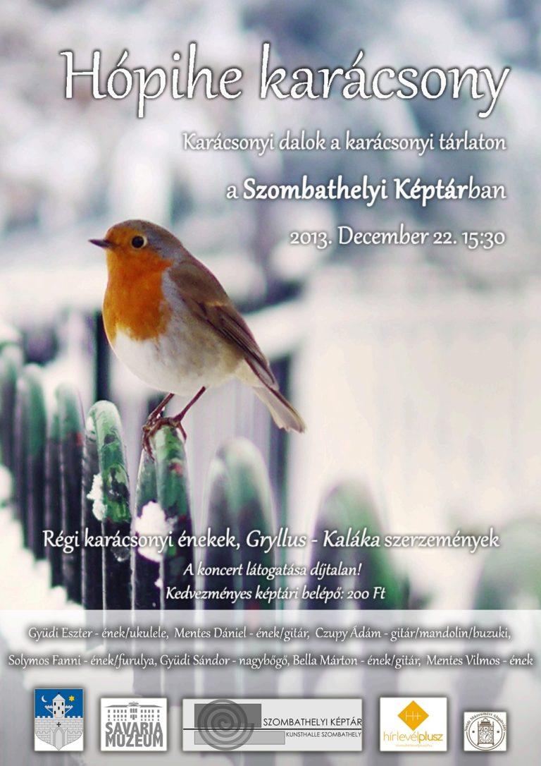 Hópihe karácsony (Szombathelyi Képtár/2013.12.22./15:30)