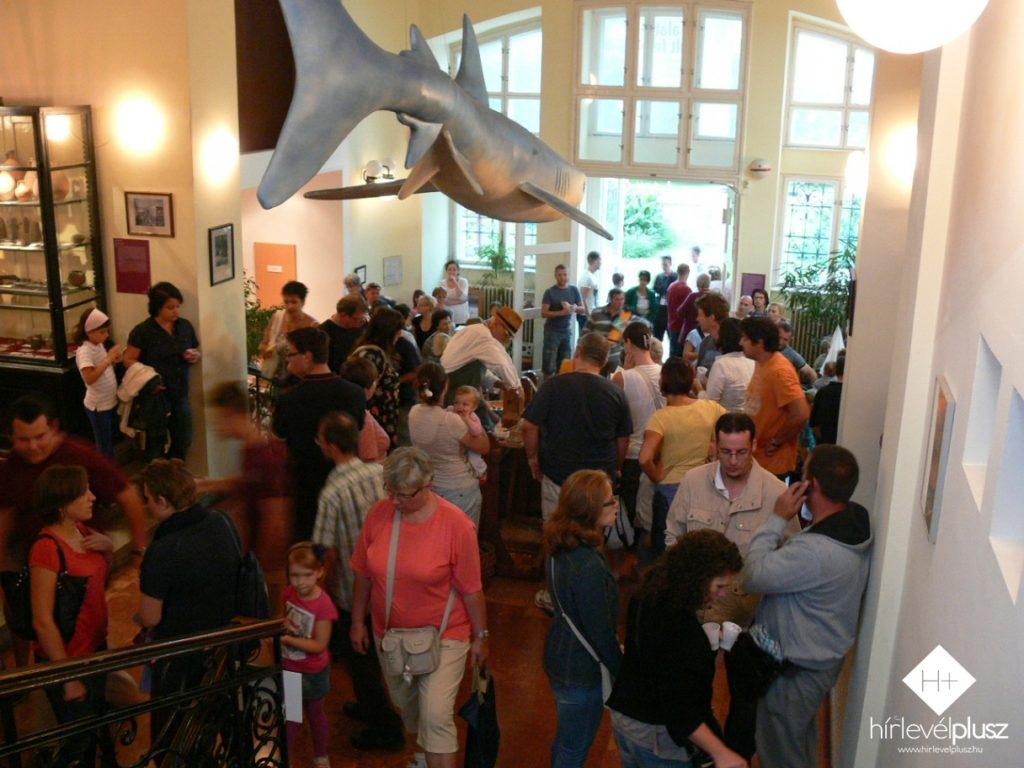 A vihar megérkeztével a standok és a programok a Savaria Múzeum épületébe költöztek be