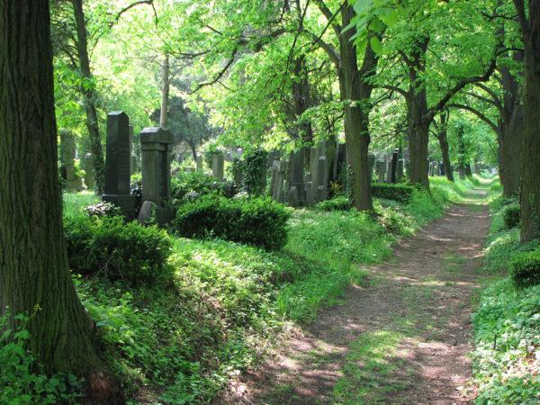 Zentralfriedhof / Ausztria, Bécs Közel 3 millióan alusszák örök álmukat a bécsi központi temetőben. A zenészvilág kiemelkedő alakjai nyugszanak itt, köztük Brahms, a Strauss-család, Schubert és Beethoven. (Forrás: mein.salzburg.com)