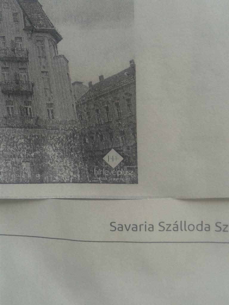 savariaszallo_h2