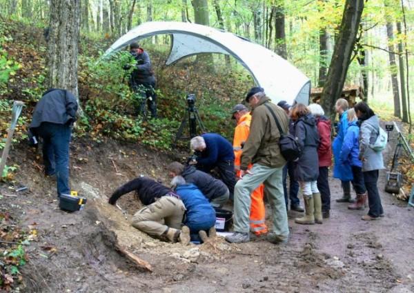 Az exhumálás 2013-ban (Forrás: dunkelgraefin.de)
