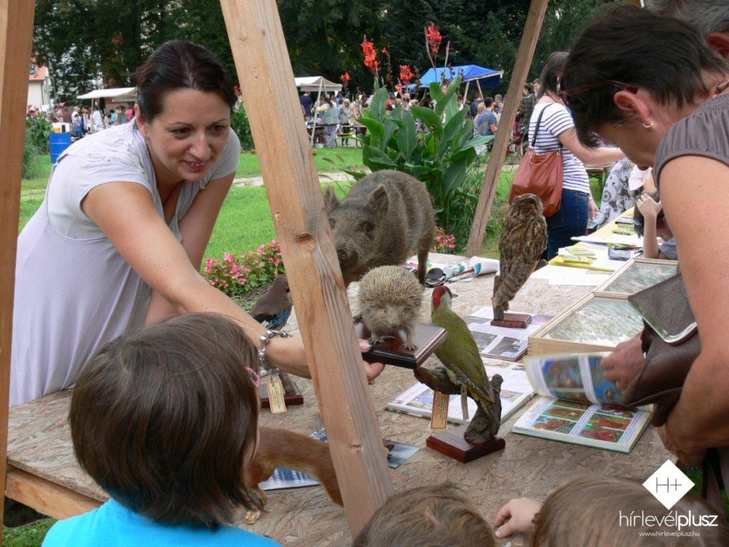 A Vasi Múzeumi Látványtár bemutatóhelyén különböző állatokkal ismerkedhettek meg