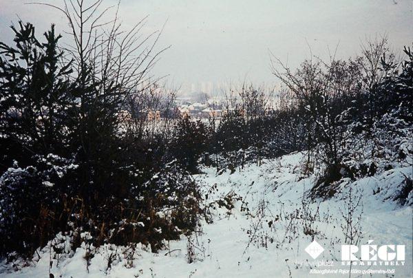 Oladi domb (1977. január) (Kőszegfalviné Pajor Klára gyűjteményéből)