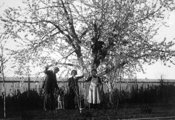 Fortepan - 1912. tavasz