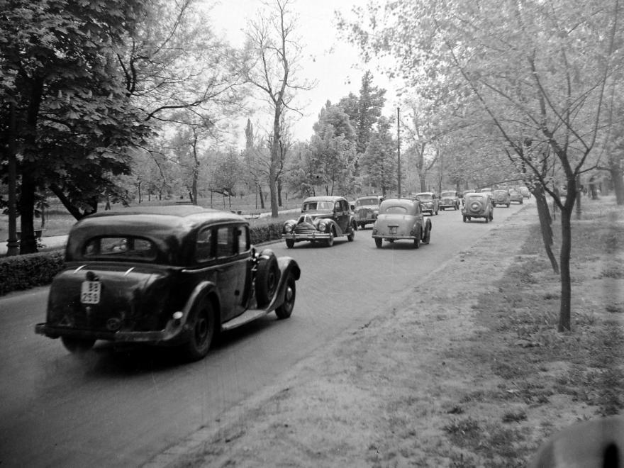 Fortepan - 1955. Margitsziget, tavasz