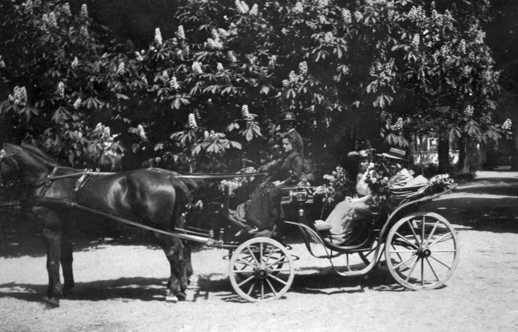 Fortepan - Székelyi Péter 1908.